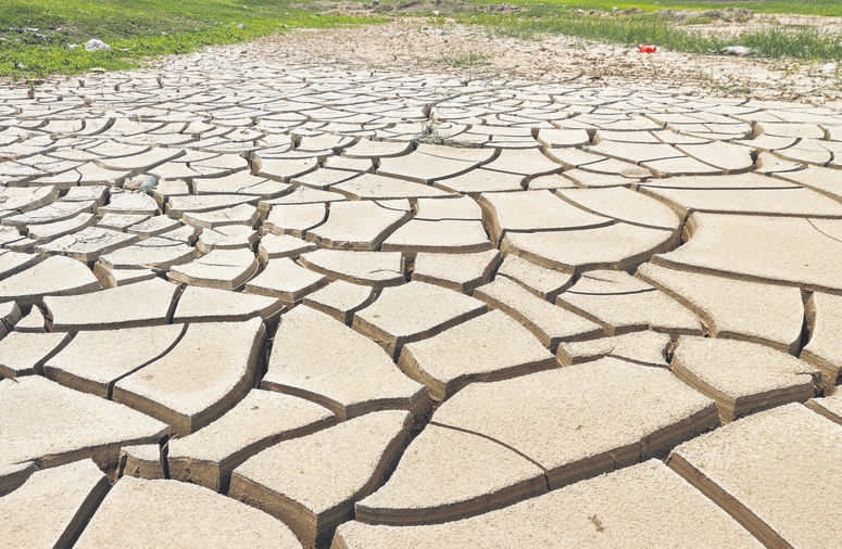 Ominous fissures: Cracked bottom of a canal in China's Henan province. Severe drought and scorching heat have damaged over a million hectares of farmland. PHOTO: AFP